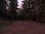 Glastonberry Grove