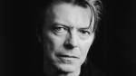 Bowie 2013 (1)
