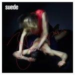 Suede_Bloodsports