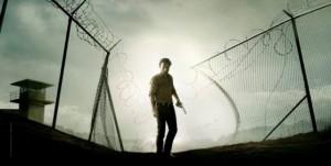 The-Walking-Dead-s4-poster-wide-560x282