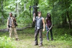 The Walking Dead Season 4 – Bob, Daryl & Michonne
