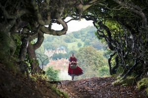 Into the Woods_1