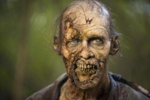 The Walking Dead Season 5 (9)