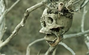 Bone Tomahawk 7