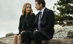 xf_10-04_homeagain_mulderscully