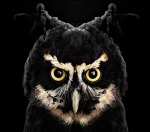 Twin Peaks The Return The Owls Are Not What They Seem(1)