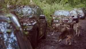 La zona lobos
